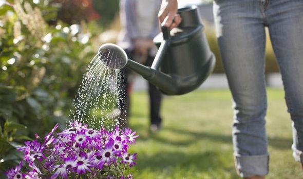 eşinizle çiçeklerinizi sulayın