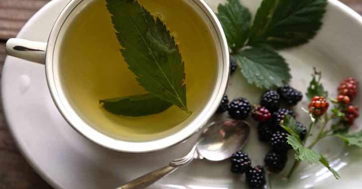 Meyve Çayı Tarifleri
